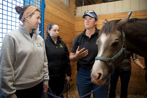 UD's equine science minor offers research, hands-on experiences