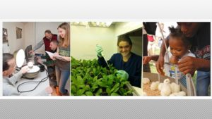 UD's College of Agriculture and Natural Resources offers undergrad research opportunities