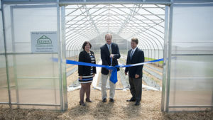 UD's College of Agriculture and Natural Resources opens second high tunnel greenhouse